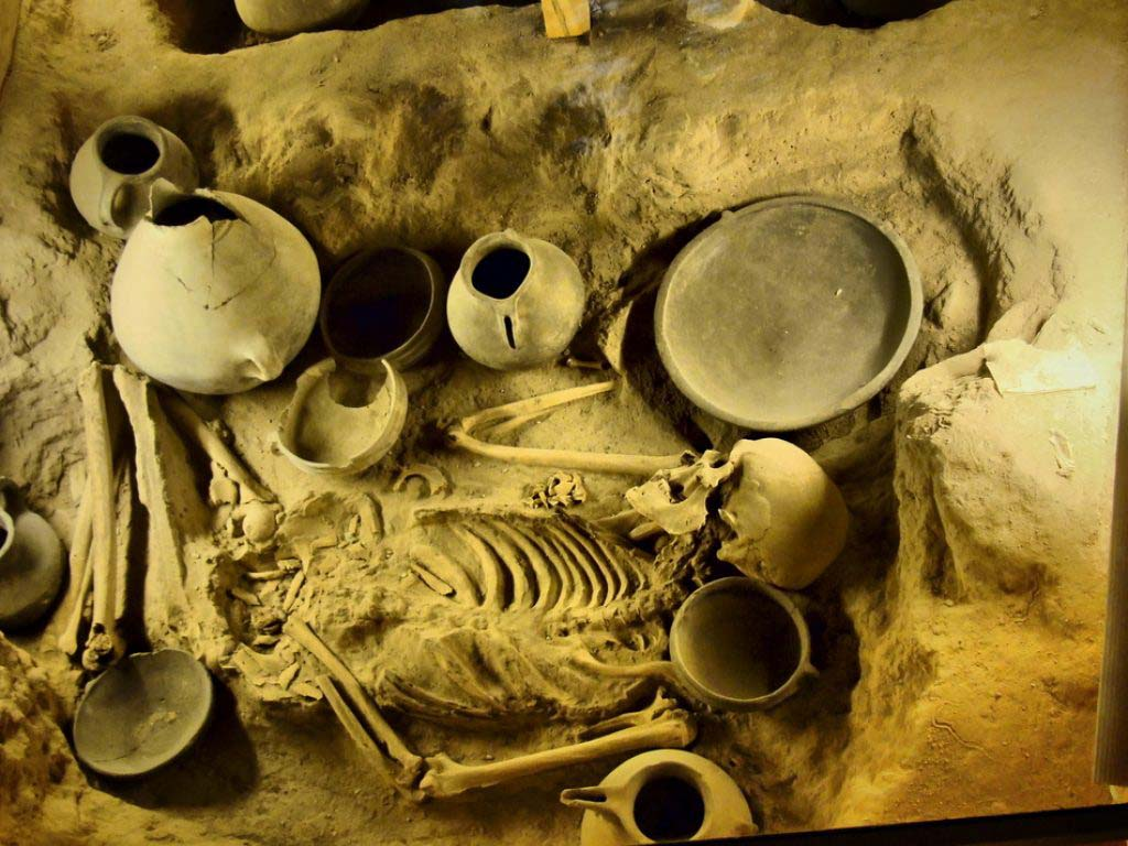 Iranian Skeleton with Antiques Iron Age Museum in Tabriz