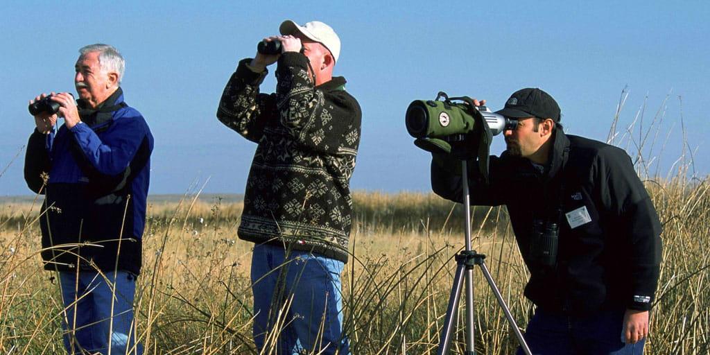 Iran birdwatching tours