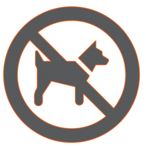 Is having dogs illegal in Iran
