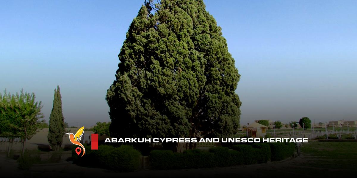 Abarkuh-Cypress-and-UNESCO-heritage
