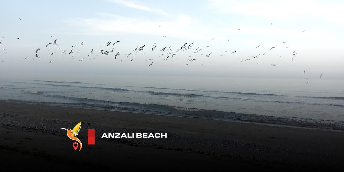 Anzali beach in gilan province in north of Iran