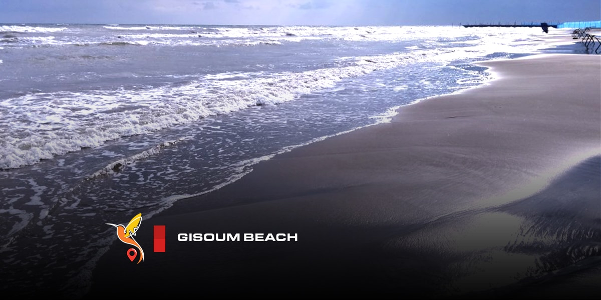 Gisoum beach and jungle in gilan province