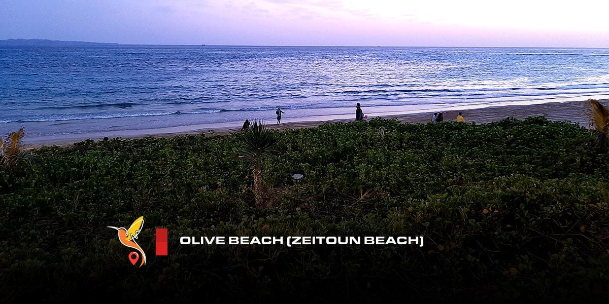 Olive-beach-(Zeitoun-beach)-min