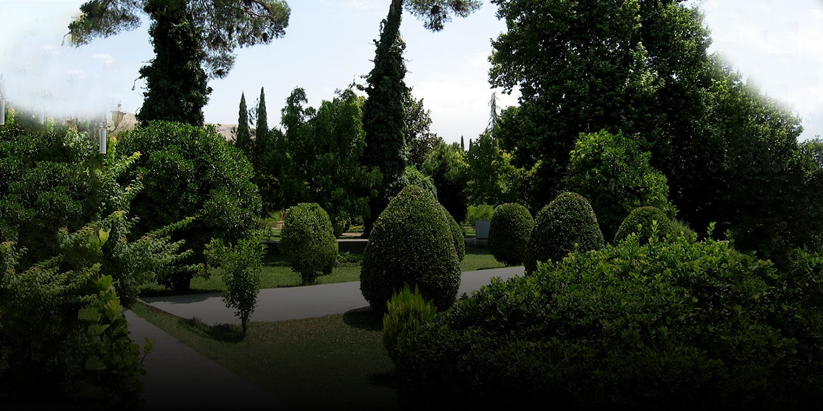 Garden with two classes of trees; non-fruit and fruit